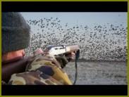 hunts10510